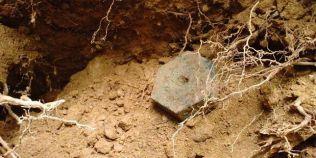 Descoperirea din incinta Sarmizegetusei va fi expusa, dupa doi ani. Matrita bijutierului dacilor e unica