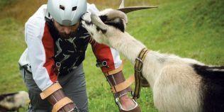 Concediu inedit: un barbat a stat timp de trei zile intr-o turma de capre salbatice, traind la fel ca ele