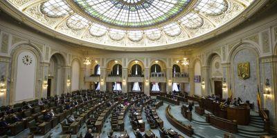 Senatul a respins propunerea legislativa care reintroduce insulta si calomnia in Codul Penal