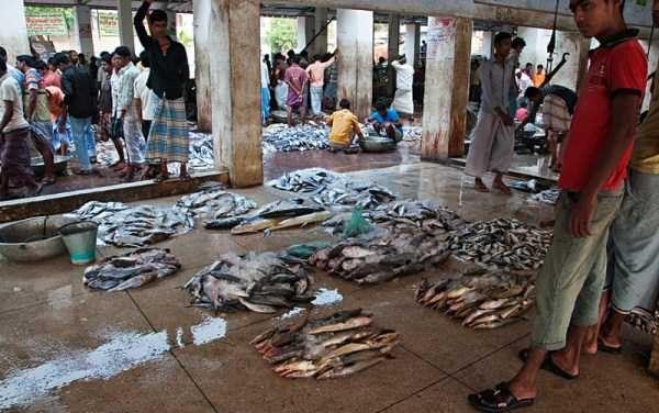 SARACIE EXTREMA, tone de gunoi, POLUARE si OAMENI CU PADUCHI. Bangladesh si aerul sau de EV MEDIU l Foto galerie