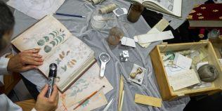 FOTO Manuscrisul lui Voynich, una dintre cele mai misterioase carti din lume, va fi reprodus in Spania