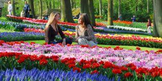 Cele mai frumoase parcuri din lume: oaze de relaxare si muzee in aer liber care atrag milioane de turisti in fiecare an