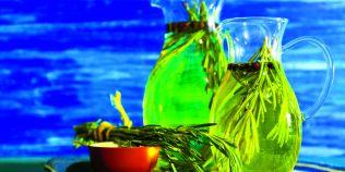 Tratamentul cu ulei de rozmarin combate caderea parului