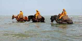 Traditii exotice incluse in patrimoniul UNESCO. Singurul loc din lume unde crevetii sunt pescuiti cu ajutorul cailor
