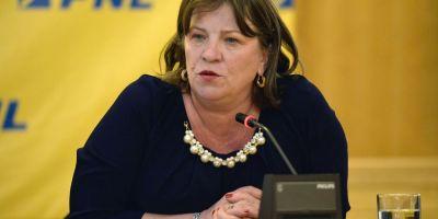 Interviul cu Ghita. Norica Nicolai cere demisia sefului Comisiei de cultura: